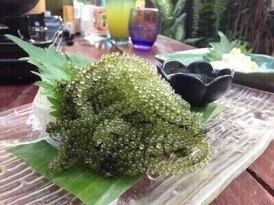 沖縄料理専門店トンロー「ニライカナイ」で、①海ぶどう半額!②宴会コース10名以上で1名半額!